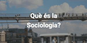 què és la sociologia