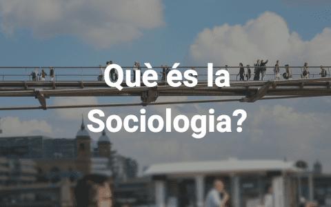 Què és la sociologia?