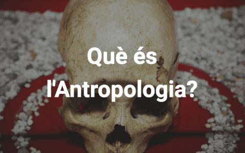 Què és l'antropologia?
