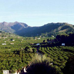 La comarca de La Ribera Alta